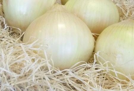 Receta de cocina: Crema de cebollas