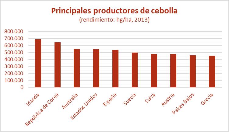 productores de cebolla, rendimiento